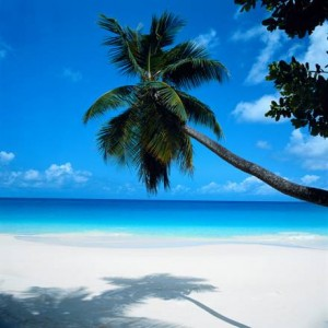 10 Best U.S. Beaches: Siesta Key is #1