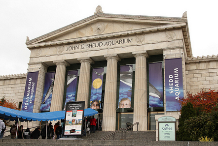 Free Museum Entry All Weekend (Bank of America)