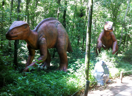 Top 6 Spots to Get Down with Dinosaurs