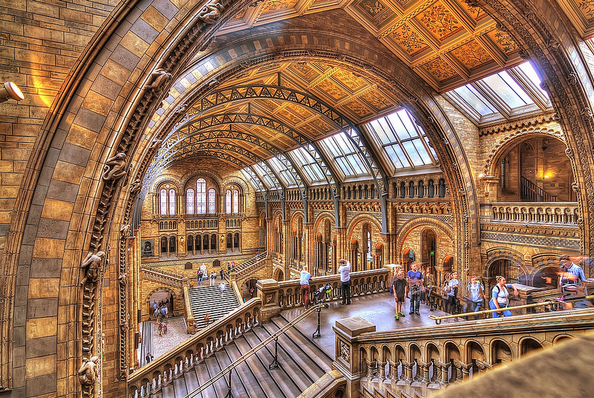 British Museum Of Natural History Tickets