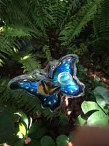 Key West Butterfly & Nature Conservatory