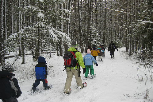 20 Really Cool Things Your Kids Can Do in National Parks