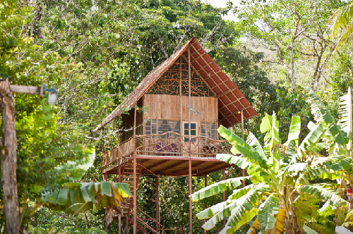 15 more unique vacation rentals your kids will love for Costa rica tree house rental