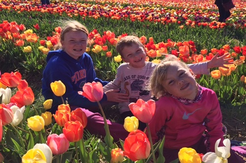 kids tulips
