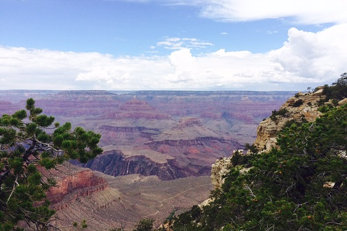 Here's one of several dozen photos I took while walking along the Rim Trail.