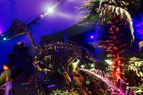 childrens museum-dinosphere