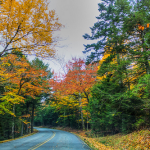 maine fall foliage