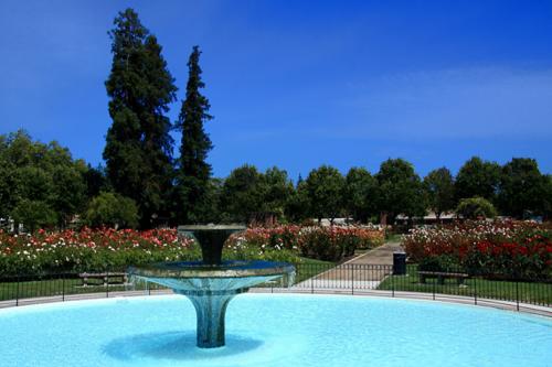 SJ-Municipal Rose Garden