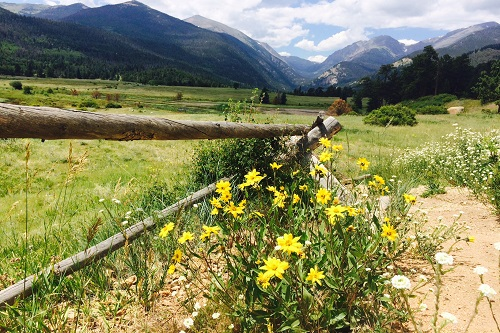 15 Fun Things to Do in Estes Park, CO with Kids