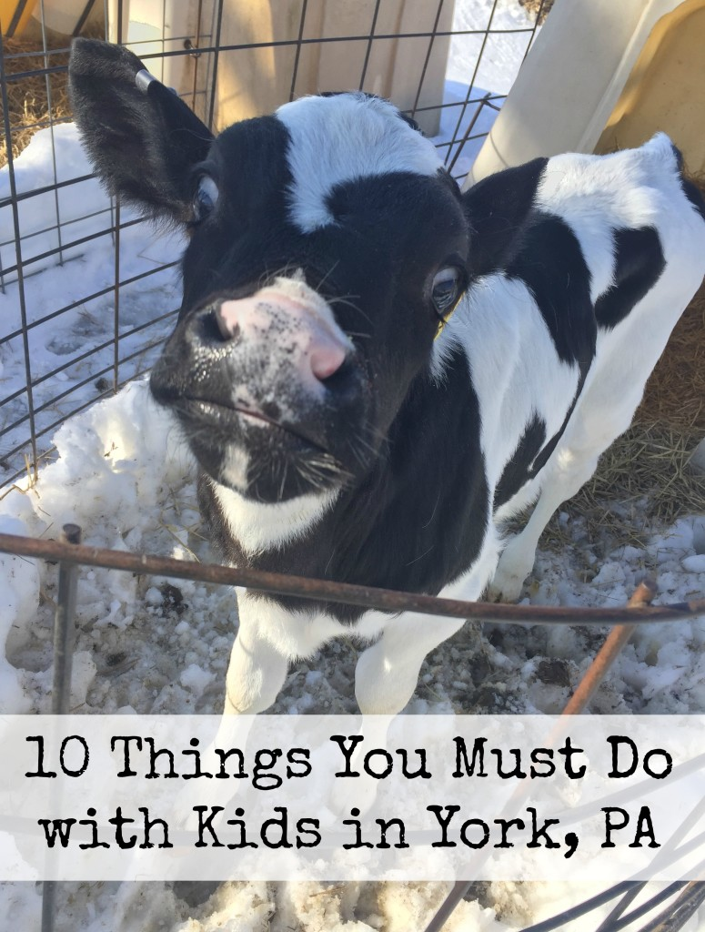 10 Things You Must Do with Kids in York, PA