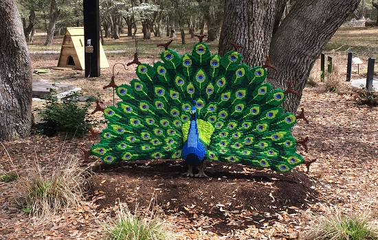 Kids will love the new Nature Connects exhibit at Brookgreen Gardens.