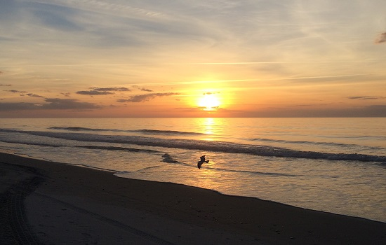 There' s nothing like a Myrtle Beach sunrise.