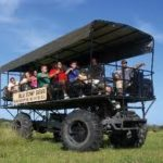 8 Ways to Explore the Everglades (More than Just Airboat Rides)