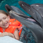 7 Ways to Get Up Close and Personal with Dolphins