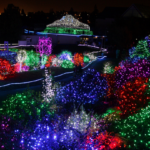 5 Festive Ways to Enjoy Holiday Lights
