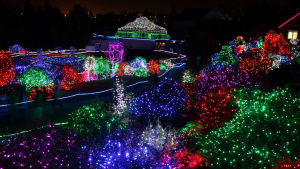 ZooLights at Point Defiance Zoo in Tacoma, WA