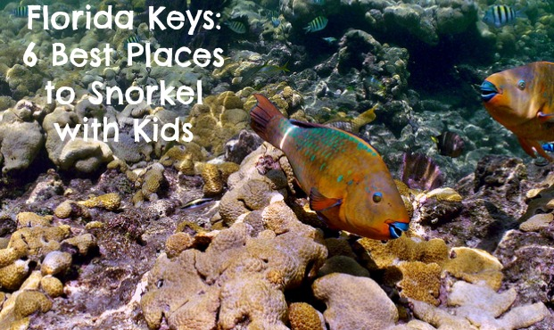 Places to Snorkel With Kids