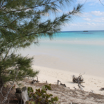 4 National Parks Worth a Visit in the Bahamas
