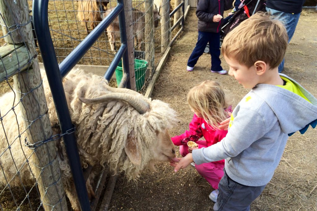 10 Stops to Make on the Shenandoah Valley Kids Trail
