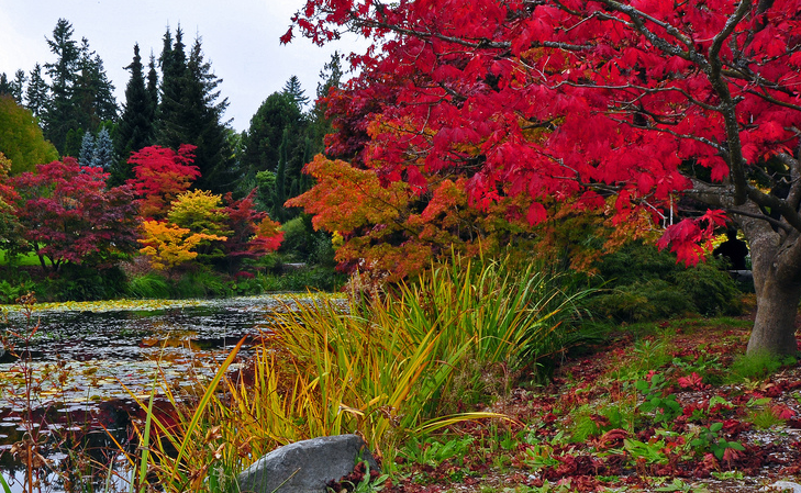 8 Reasons to Explore Vancouver as a Family this Fall