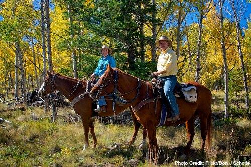 elk mountain ranch