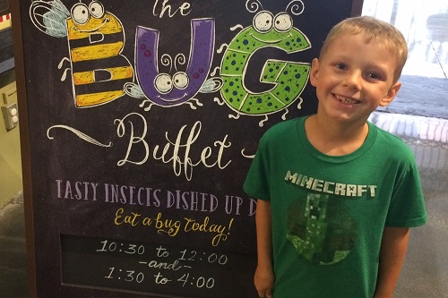 bug buffet sign
