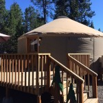 Camping with Kids: 20 Places Where You Can Stay in a Yurt
