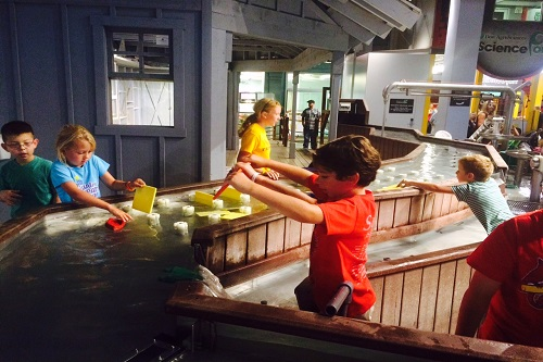 12 Things You Must Do at the Children's Museum of Indianapolis