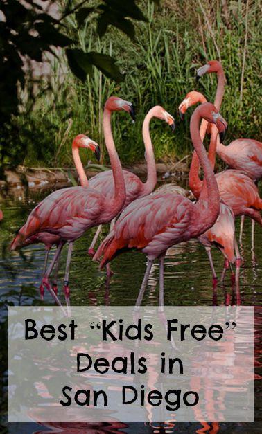 """Best """"Kids Free"""" Deals in San Diego"""