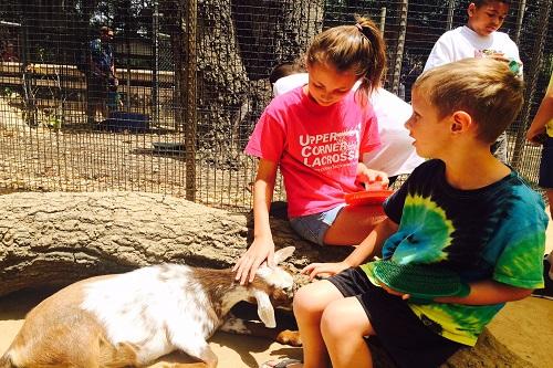 Irvine-Orange County Zoo