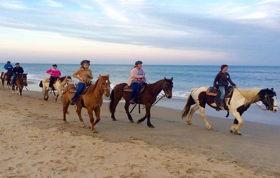Horseback Riding In Virginia Beach The Best Beaches World