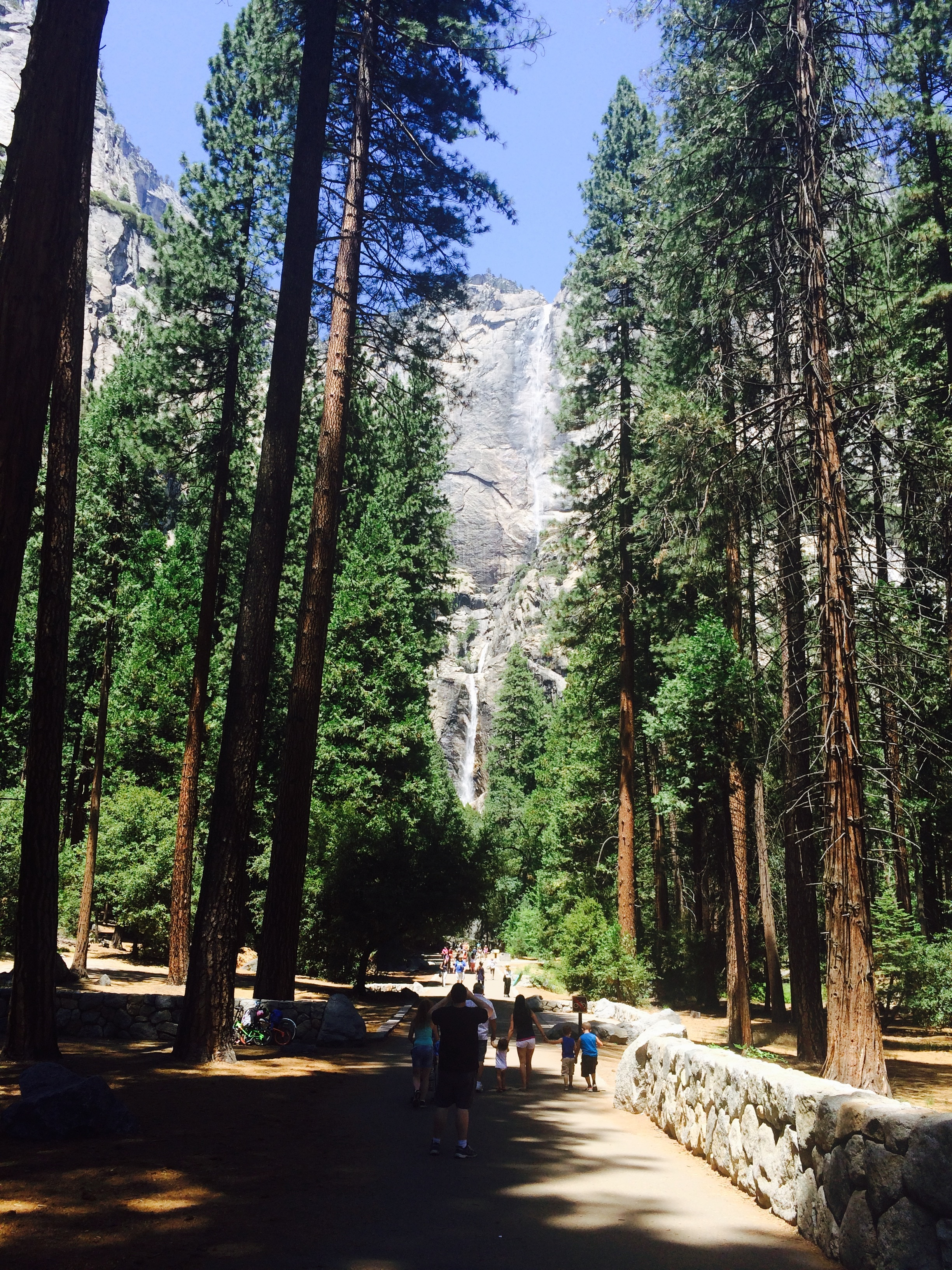 yosemite national park visit  10 things to do as a family