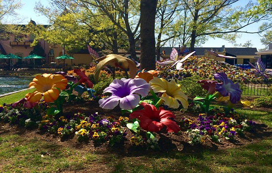 The spring flowers throughout Kings Dominion were beautiful.
