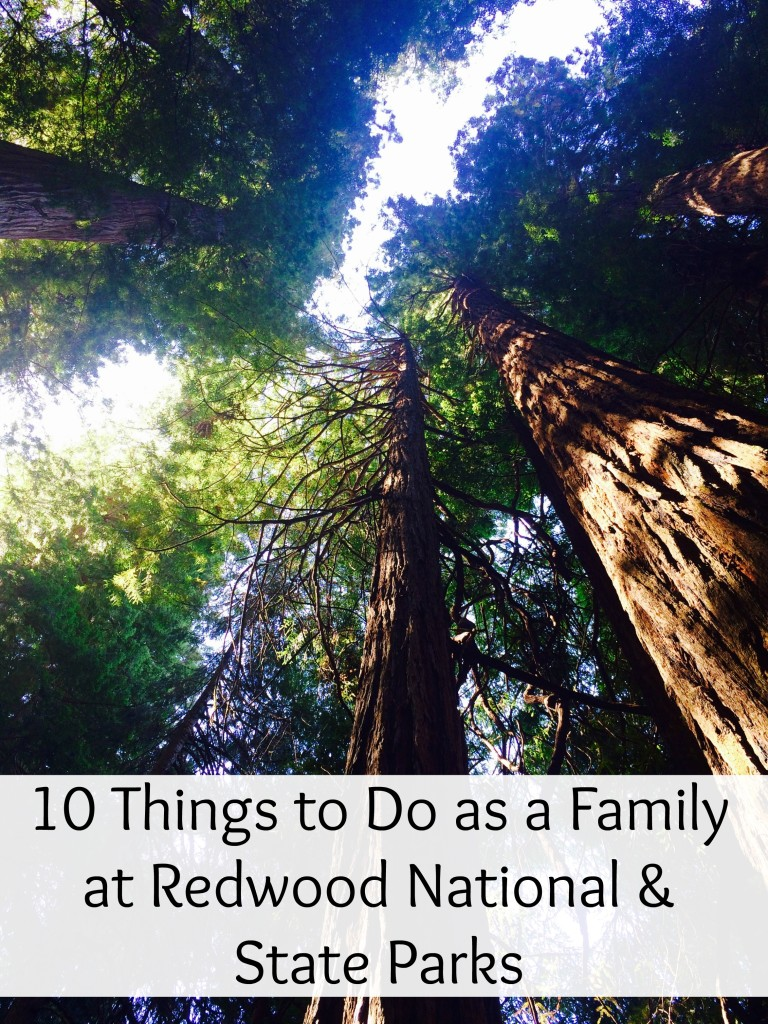 10 Things to Do as a Family at Redwood National & State Parks