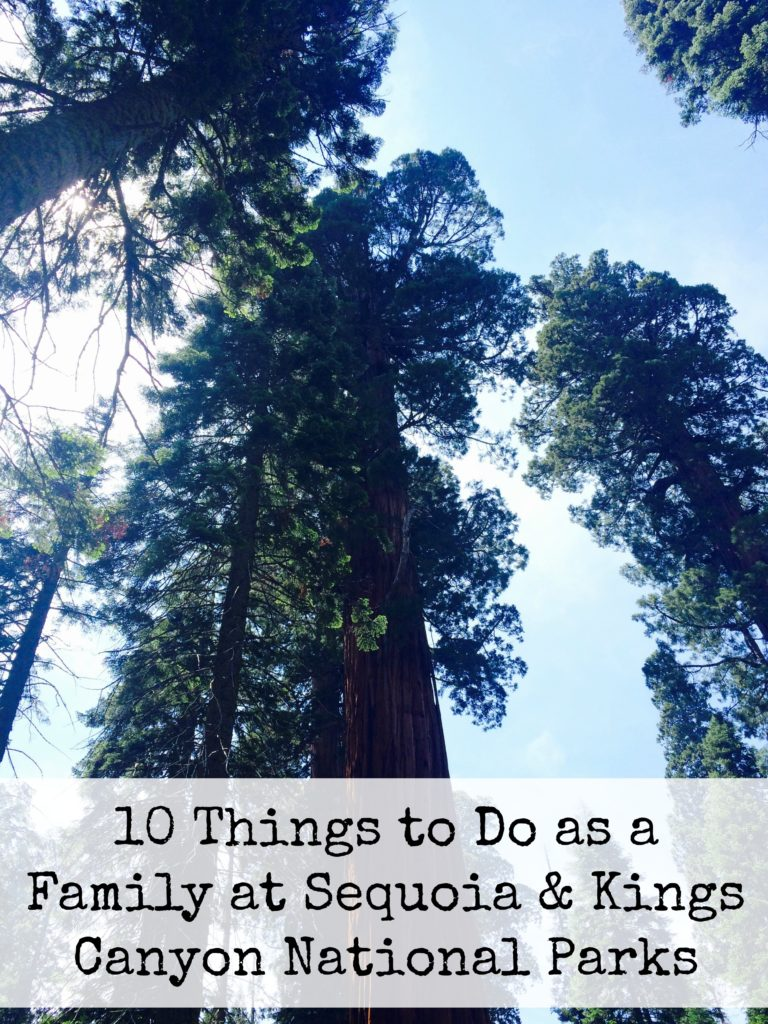 10 Things to Do as a Family at Sequoia & Kings Canyon National Parks