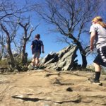 Shenandoah Hikes: Best Hiking Trails in Virginia for Kids
