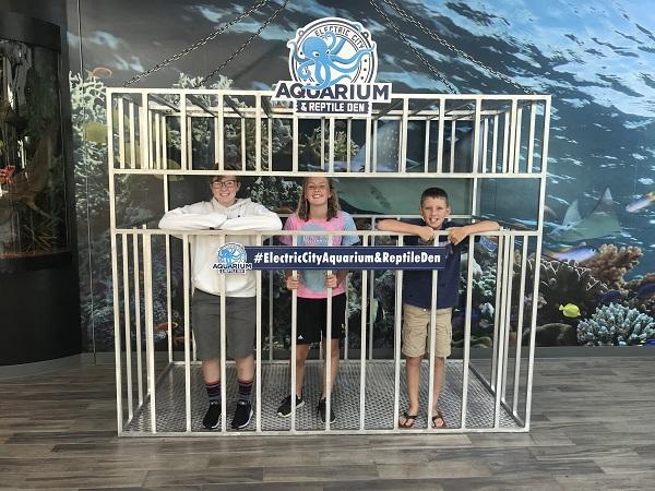 Electric City Aquarium & Reptile Den-Things to Do in Scranton, PA
